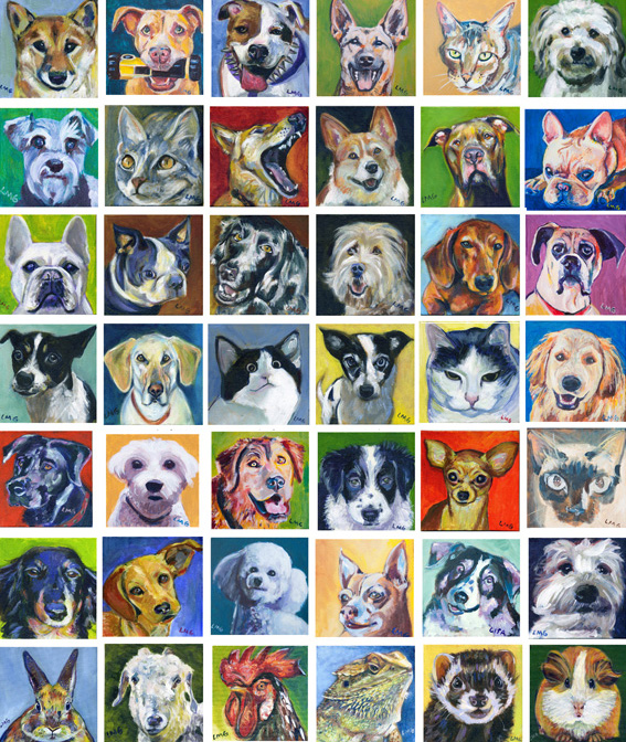 pet-portrait-squares_background