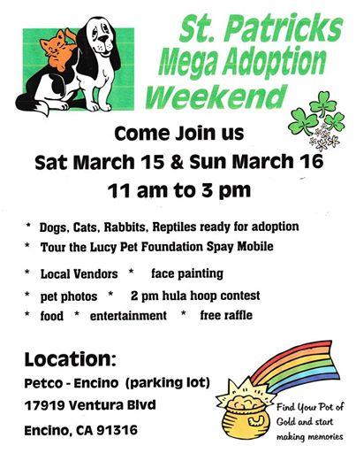 Petco Mega Adoption event flyer
