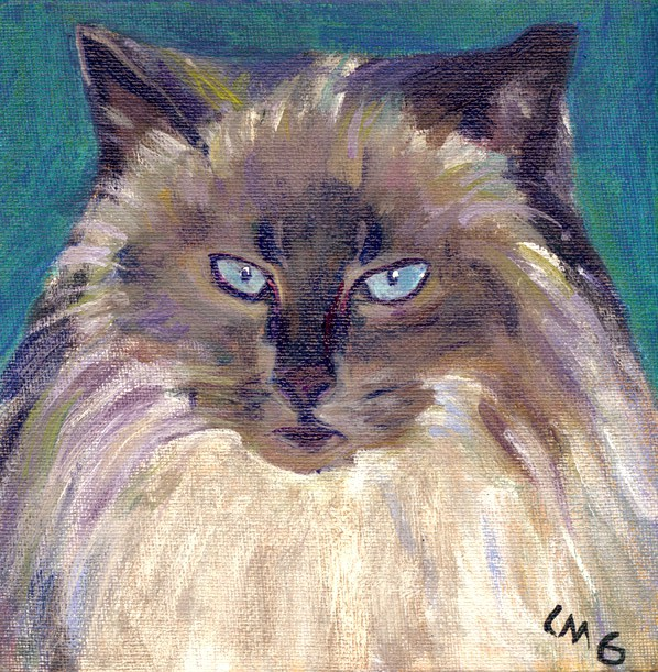 cat079-tinkerbelle