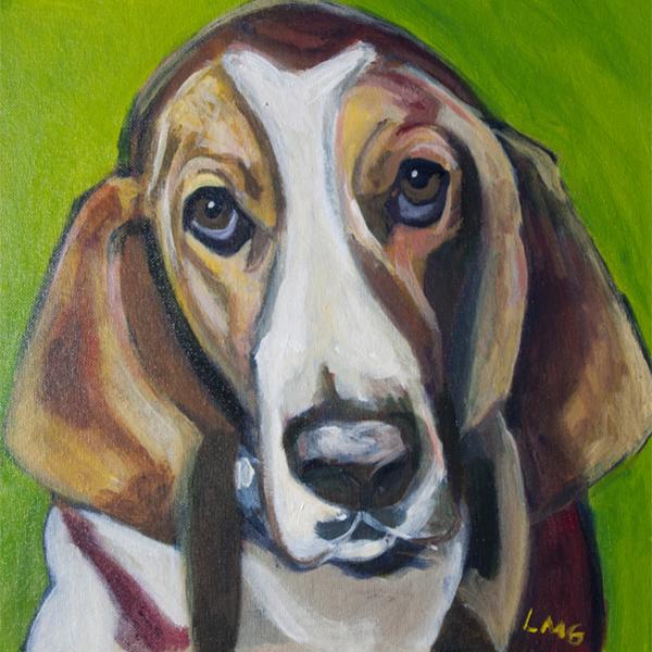 Gigi_lisa-goldfarb-dog